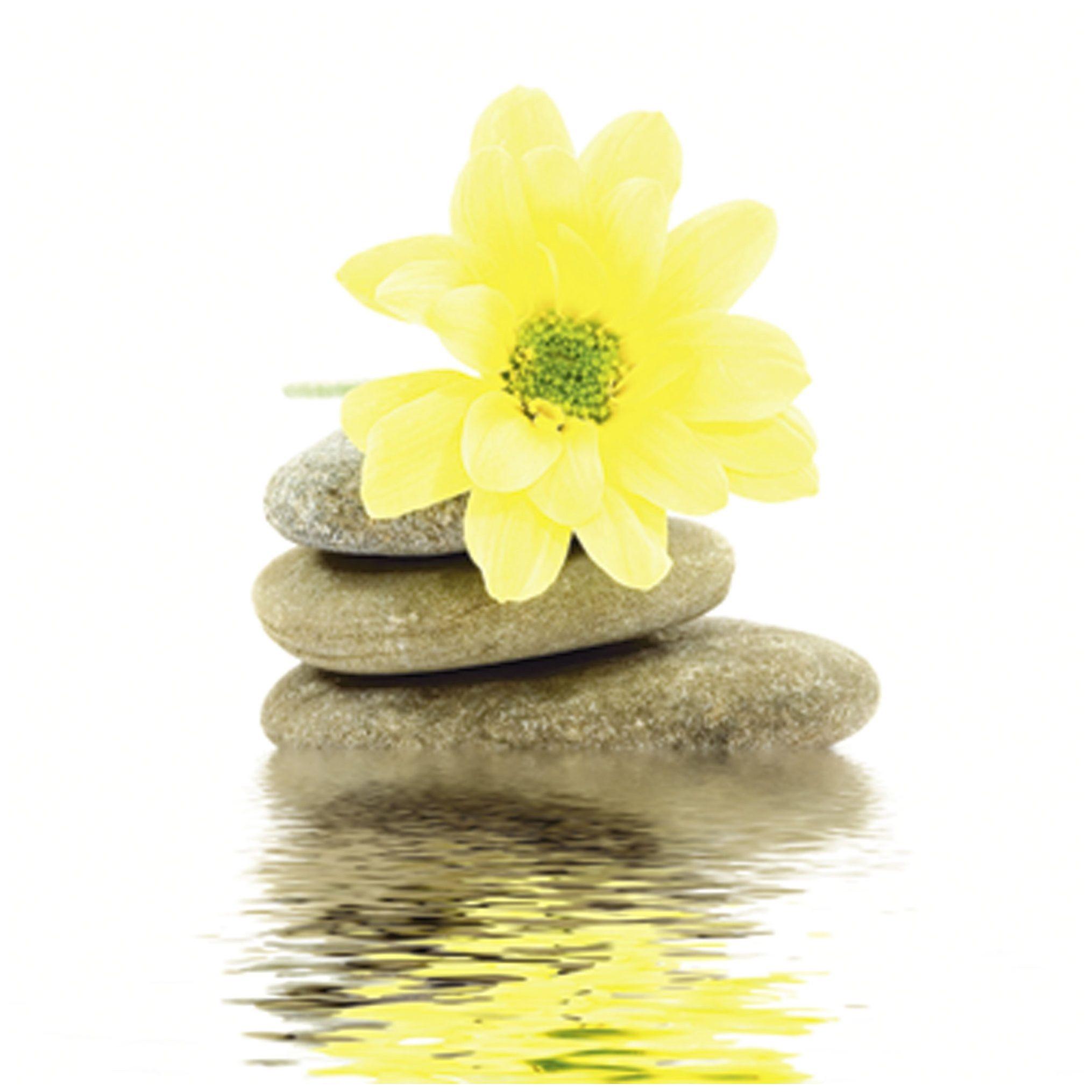 Home affaire, Glasbild, »Blume und Steine«, 30/30 cm