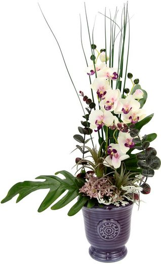 Kunstpflanze »Orchidee« Orchidee, I.GE.A., Höhe 50 cm