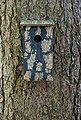 dobar Nistkasten »Meisenkasten Pinus sylvestris«, BxTxH: 15,5x14,5x30 cm, Bild 3