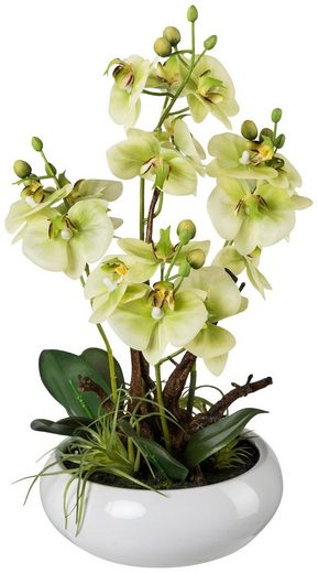 Kunstpflanze »Orchideen Arrangement«, im Keramiktopf, H: 46 cm