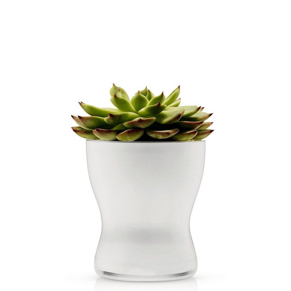 EVA SOLO Eva Solo Blumentopf aus Glas selbstbewässernd 11cm weiß in weiß