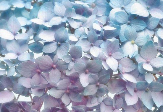 KOMAR Fototapete »Light Blue«, 8-teilig