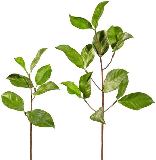 Kunstpflanze »Magnolienblattzweig«, 2er Set, H: 100 cm
