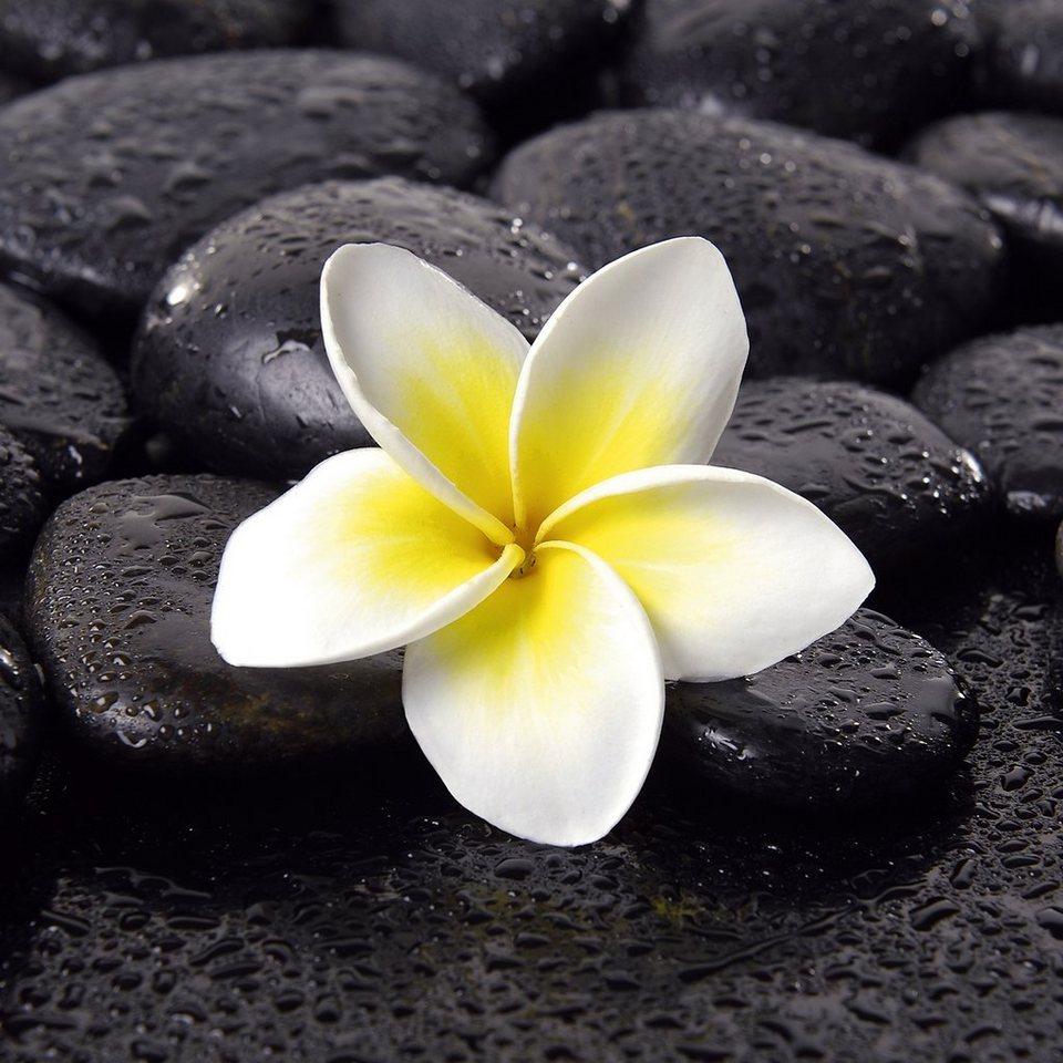 Bild, EUROGRAPHICS, 30/30 cm in schwarz