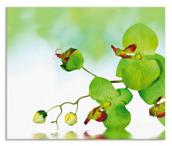 Artland Küchenrückwand »Schöne Orchidee mit grünem Hintergrund«, (1-tlg)