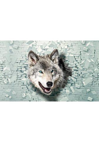 Consalnet Fototapetas »Wolf kommt iš der Wand« g...
