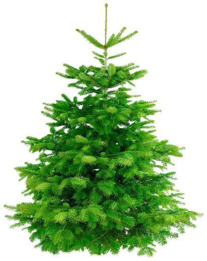 Weihnachtsbaum »Nordmanntanne«, frisch geschlagen, Höhe: 180-190 cm