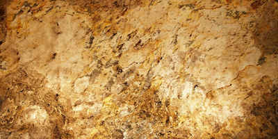 Slate Lite Dekorpaneele »Translucent Falling Leaves«, BxL: 61x122 cm, 0,74 qm, (1-tlg) aus Naturstein
