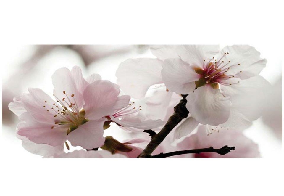Home affaire Wandbild »Apfelblüten«, Größe: 125 x 49 cm