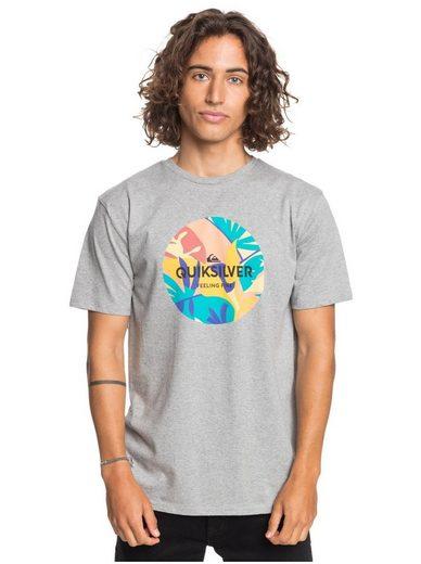 Quiksilver T-Shirt »Summers End«