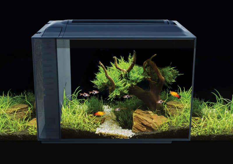 FLUVAL Aquarium »Spec XV 60«, BxTxH: 56x29x45 cm