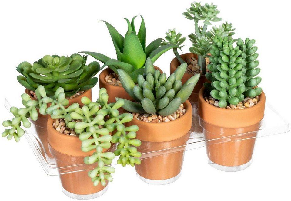 DIY 3D-Silikonform f/ür Blumentopf quadratisch Bonsai-Dekorformen Gips Ton Basteln Beton Zement Kerzenhalter f/ür Sukkulenten rund Blumentopf Vase