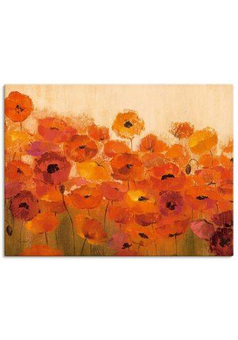 Artland Paveikslas »Sommer Mohn« Blumen (1 vie...