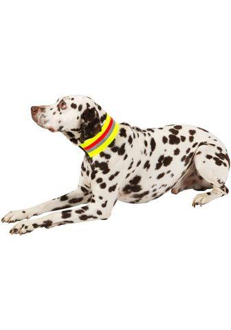 HEIM šuns antkaklis »Signalhalsband« Textil...