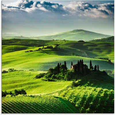 Artland Glasbild »Sonnenaufgang über einer Olivenfarm«, Felder (1 Stück)