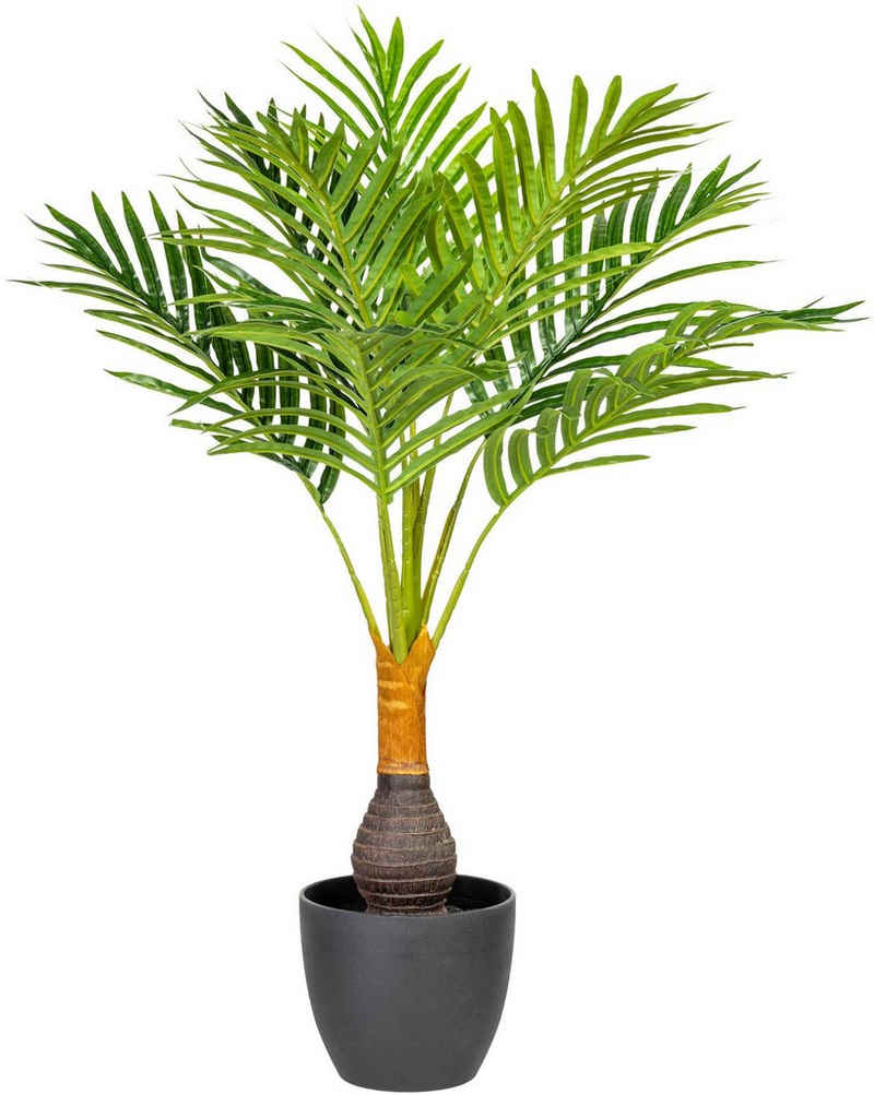 Kunstpalme »Kentiapalme« Palme, Creativ green, Höhe 70 cm