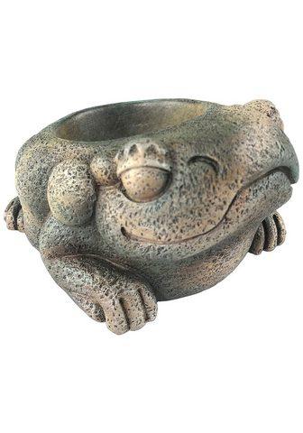 Exo Terra Terrariendeko »EX Aztec Frosch« Wasser...