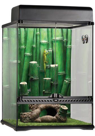 Exo Terra Terariumas »Bamboo Forest Kit« BxTxH: ...
