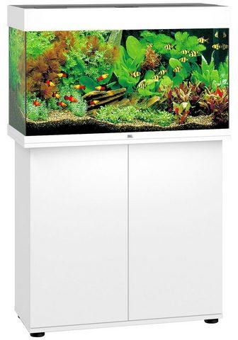 JUWEL AQUARIEN Aquarien-Set »Rio 125 LED« BxTxH: 81x3...