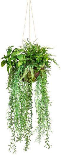 Künstliche Zimmerpflanze »Dekokugel zum Hängen« Grünpflanze, Creativ green, Höhe 80 cm