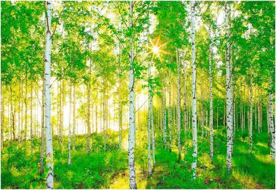Komar Fototapete »Sunday«, glatt, Meer, Wald, bedruckt, (Set), ausgezeichnet lichtbeständig