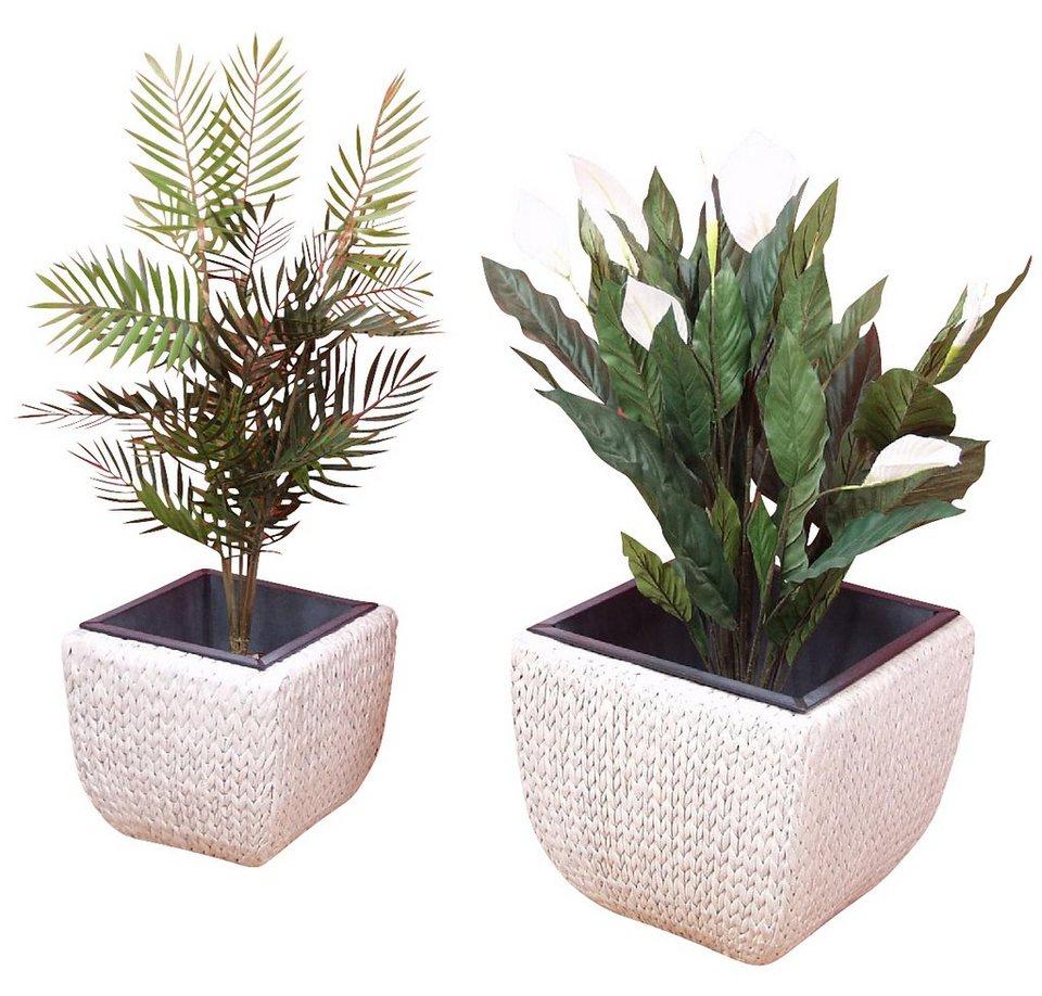 Pflanzen-Übertopf, Home affaire