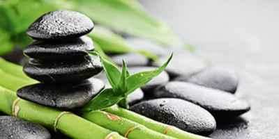 Wallpaper bambus und steine  Bilder in grün online kaufen | OTTO