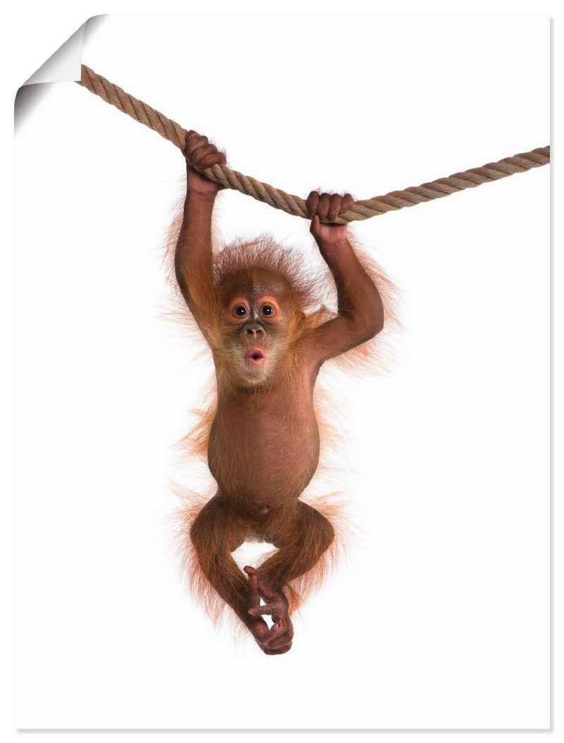 Artland Wandbild »Baby Orang Utan hängt an Seil II«, Wildtiere (1 Stück), in vielen Größen & Produktarten - Alubild / Outdoorbild für den Außenbereich, Leinwandbild, Poster, Wandaufkleber / Wandtattoo auch für Badezimmer geeignet