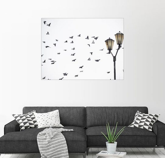 Posterlounge Wandbild, Schwarm und Laterne