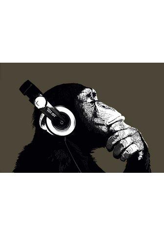 HOME AFFAIRE Paveikslas »The Chimp«