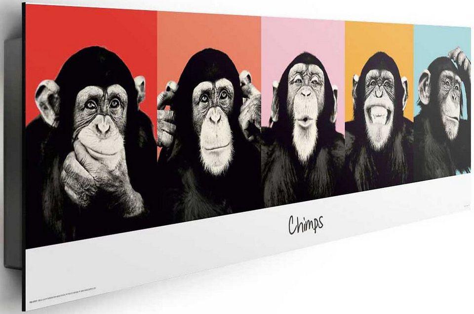 Bild, Home affaire, »The Chimp - compilation«, 90/30 cm in schwarz