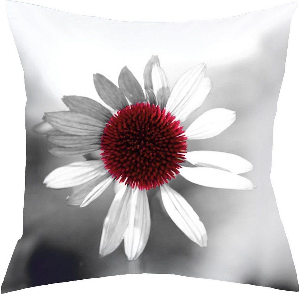 kissenh lle home wohnideen monterrey 1er pack online kaufen otto. Black Bedroom Furniture Sets. Home Design Ideas