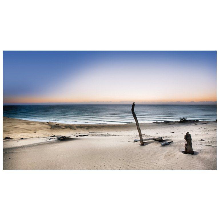 Eurographics Acrylbild »Reach For The Sun« in bunt