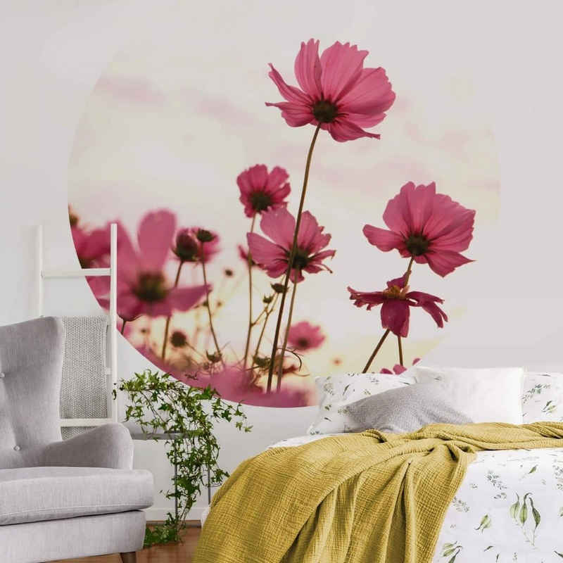K&L Wall Art Fototapete »Runde Fototapete Blumen Tapete Pinke Kosmeen Vliestapete Wohnzimmer Wandbild«, Schmuckkörbchen