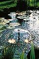 UBBINK Springbrunnenpumpe »Elimax 4000«, 4.100 l/h, Bild 5