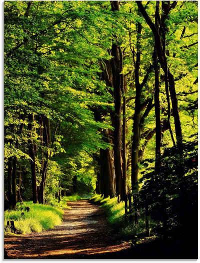 Artland Glasbild »Weg im Wald«, Wald (1 Stück)