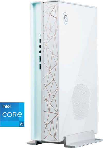 MSI Creator P50 11SI-008DE PC (Intel Core i5 11400, GeForce GTX 1660 Super, 16 GB RAM, 1000 GB HDD, 512 GB SSD, Luftkühlung)