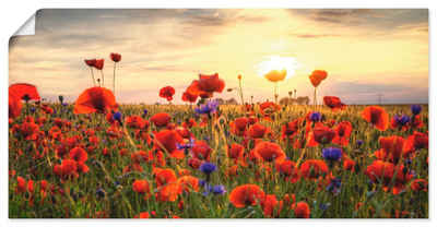 Artland Wandbild »Mohnblumen«, Blumen (1 Stück), in vielen Größen & Produktarten - Alubild / Outdoorbild für den Außenbereich, Leinwandbild, Poster, Wandaufkleber / Wandtattoo auch für Badezimmer geeignet