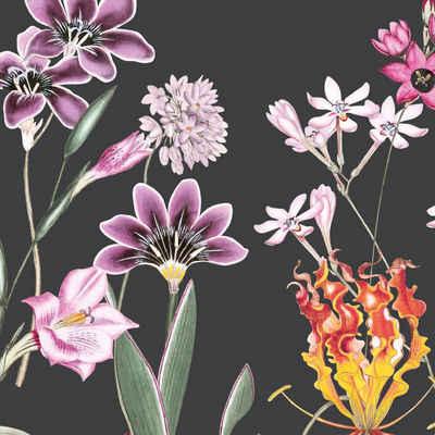 anna wand Bordüre »Botanical Garden schwarz/mehrfarbig«, selbstklebend