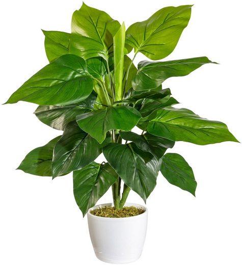 Künstliche Zimmerpflanze »Jarla« Philodendron, andas, Höhe 50 cm, im Keramiktopf