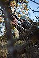 Parforce Schal »Wendefleeceschal Tecl-Wood® Signalfarbe«, Bild 4