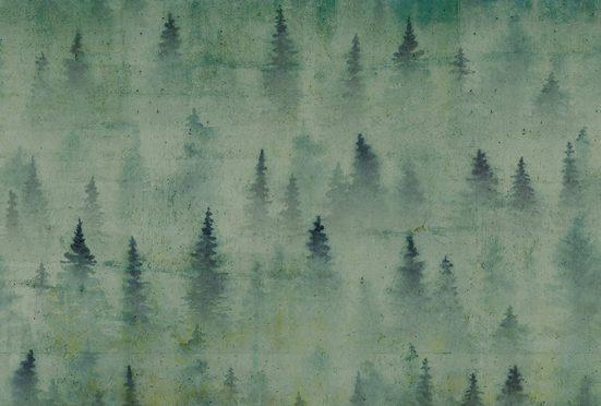 ARCHITECTS PAPER Fototapete »Atelier 47 Coniferous Artwork 1«, Wald