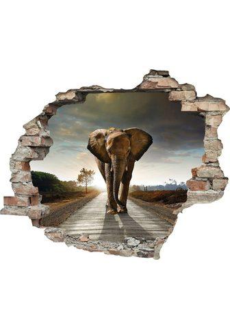 queence Wandtattoo »Elefant« (1 vienetai)