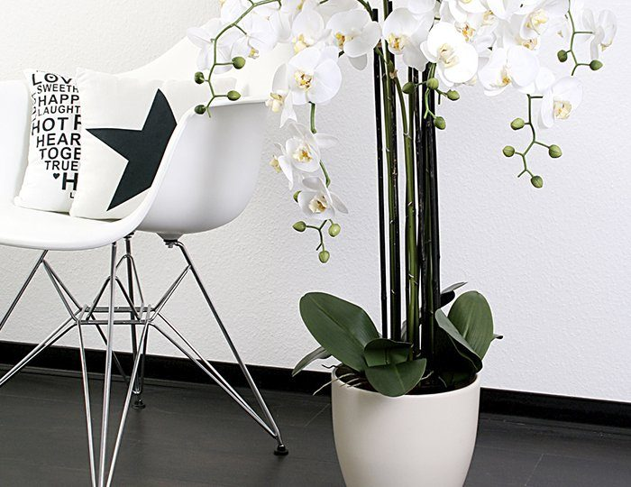 Home affaire Kunstblume »Orchidee XXL«