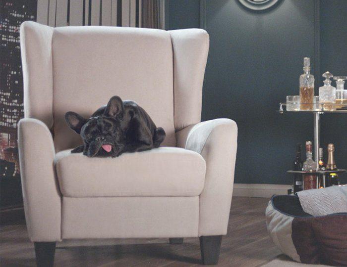 Home affaire Relaxsessel »Alessa« mit verstellbarer Rückenlehne und ausfahrbarer Fußstütze