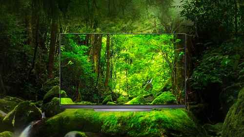 RCP 610106884 LG OLED55E7N LED Bildschirm