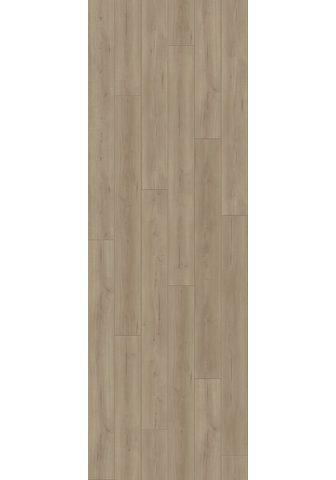 PARADOR Laminuotos grindys »Trendtime 6 - Eich...