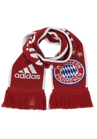 adidas Performance Daugiafunkcinė kaklaskarė »Fc Bayern M...