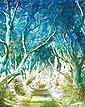 Komar Vliestapete »Alley«, glatt, naturalistisch, Bild 1