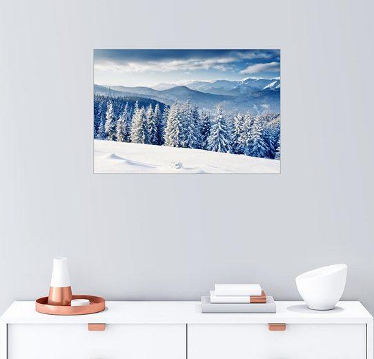 Posterlounge Wandbild, Winterwald mit Tannen